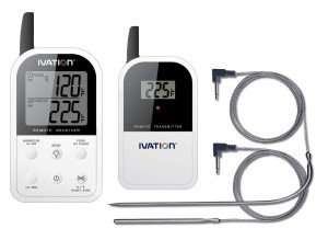 Dual probe digital thermometer